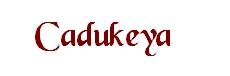 logo2 Cadukeya