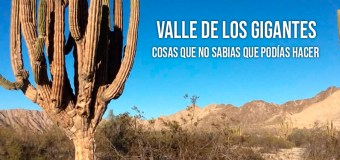 Valle de los Gigantes, Mexicali