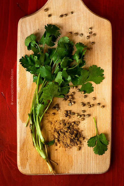 24 Cilantro Facts You Need To Know  | #cilantro #coriander #foodinfo #foodfacts