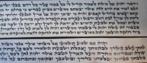 Tefillin Parshios written in ksav Ari By Rabbi Joseph T