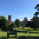 Ely Cathedral across the Dean's Meadow - home to some ponies.