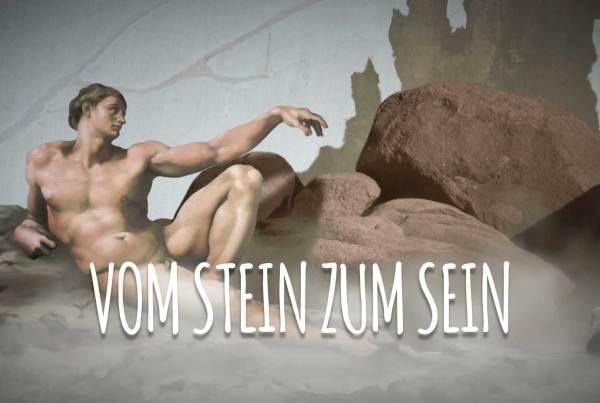 VomSteinzumSein-Titel