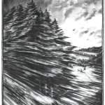 ohne Titel, 2008, Kohle auf Papier, 241 x 100 cm