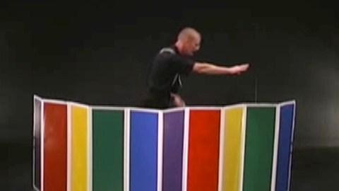 video-illusions