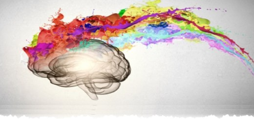 Memorization and Creativity