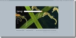 homepage_print_bing