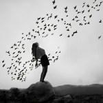 birds-black-black-and-white-girl-rock-Favim.com-57883_large