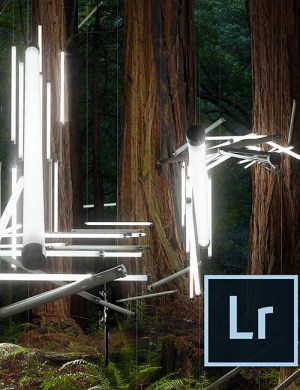 Photoshop Lightroom 5 (Software Review)