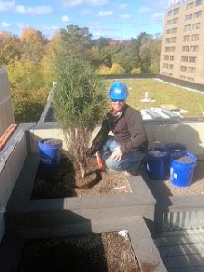 Nate installing a roof-top deck at Uptown