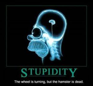 Estupidez1