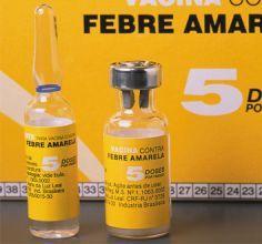 Fiebre-amarilla2