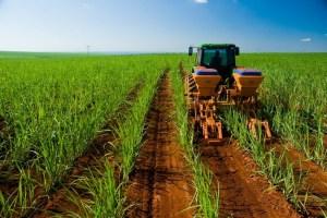 Agroindustria