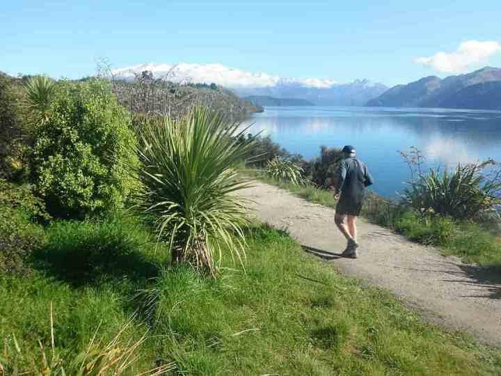 track-around-lake-wanaka