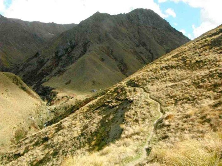 track-to-fern-burn-hut