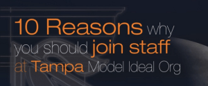 Tampa Ideal Hype