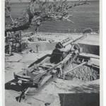 axis Italain gun