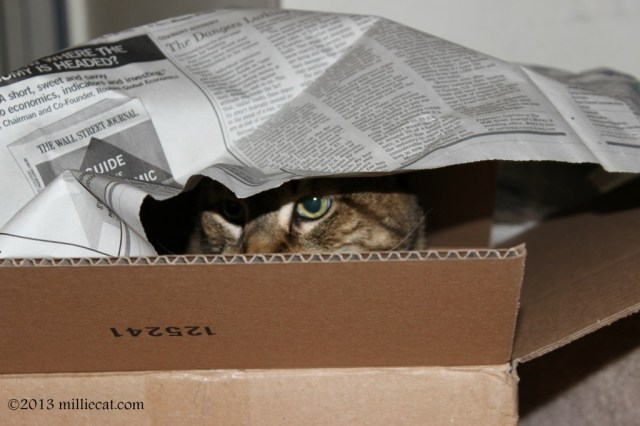 box 3 073013