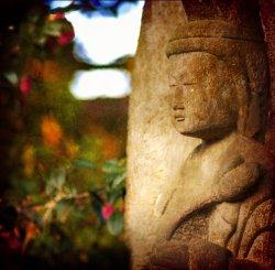 Mindfulness-Based Stress Reduction- Week Seven