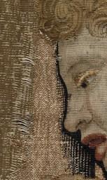 Tapestry detail weft