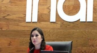 INAI pide facultad para acceder a todo tipo de documentos sin restricciones