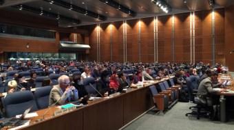 México participa en la COP-13 sobre biodiversidad biológica