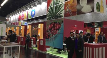 Alemania encabeza lista de compradores de Yucatán