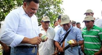 Respaldo a la producción de cítricos en Yucatán con caminos sacacosechas