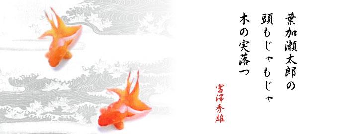 haiku10-001