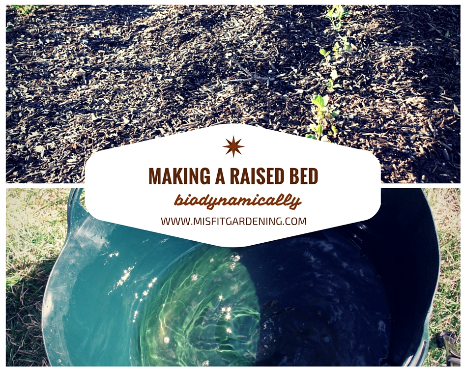 Making A Raised Bed Biodynamically