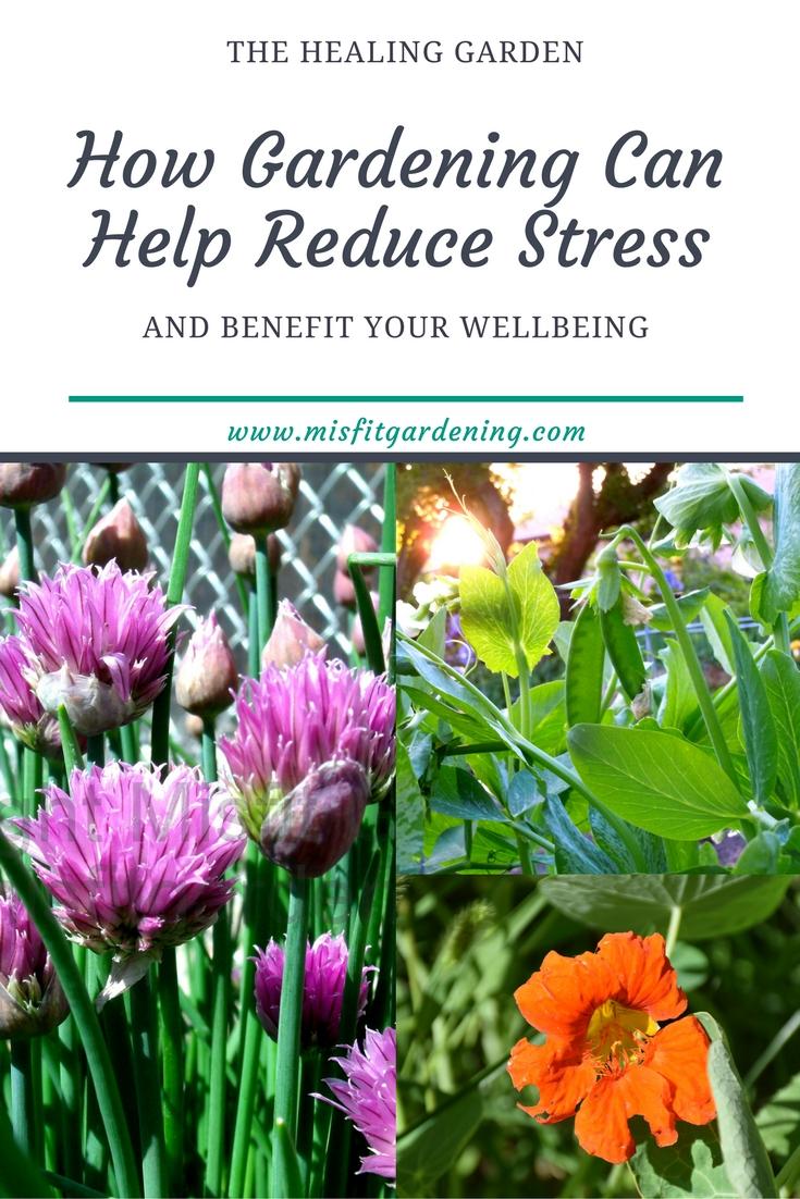 Gardening benefits stress reduction