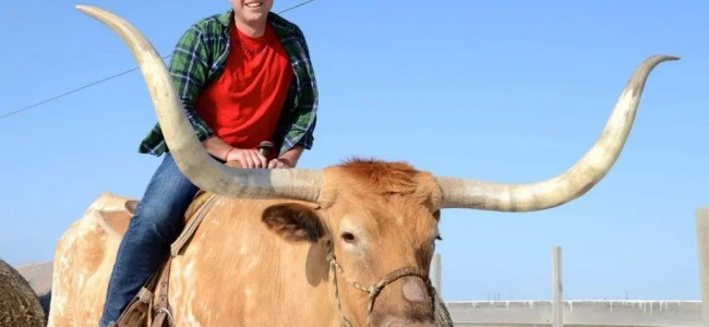 Andrew Evans on a Texas Longhorn