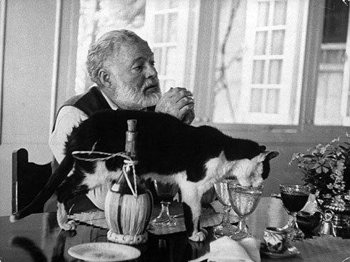 Hemingway drinking and writing