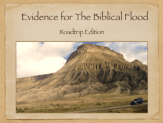 evidence-for-the-biblical-flood-roadtrip-edition