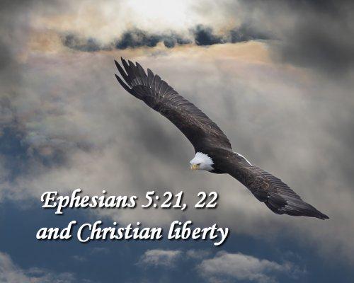 Christian Freedom on Women in Ministry blog by Cheryl Schatz