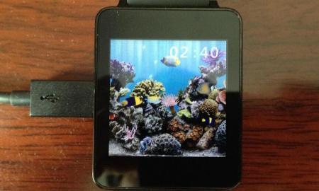 DDDWNB Aquarium Android Wear
