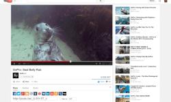 youtube-queue-update