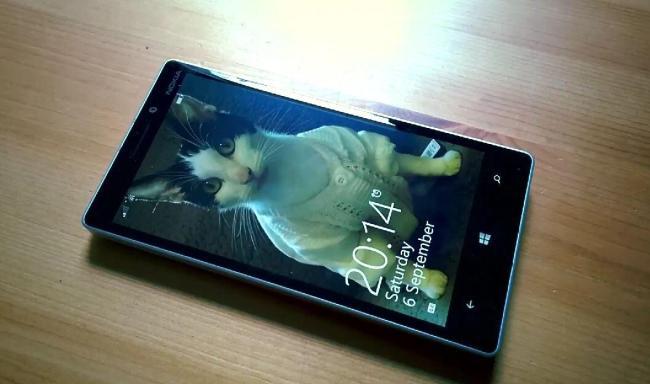 Microsoft Nokia Katze Video