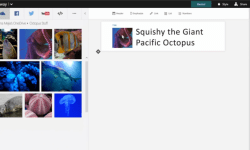 sway-preview-octopus