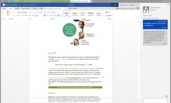 Office Online Skype-Chat