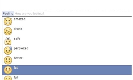 facebook feeling fat