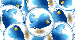 Twitter Offers Verified Account to Everyone
