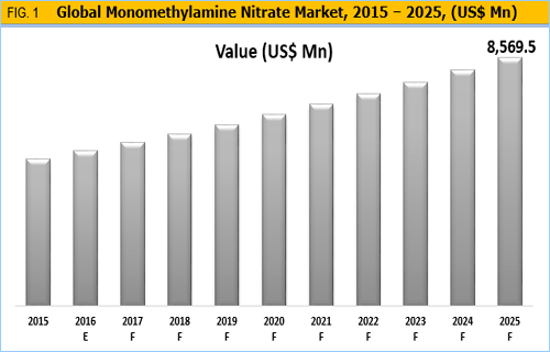 Monomethylammonium Nitrate Market