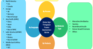 High Throughput Process Development Market