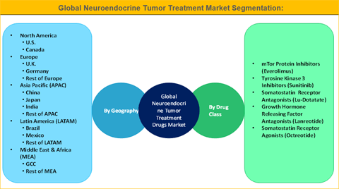 Neuroendocrine Tumor Treatment Market