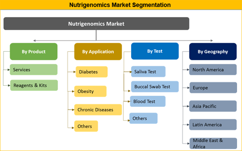 Nutrigenomics Market Is Expected To Reach US$ xx Mn By 2026 - Credence Research