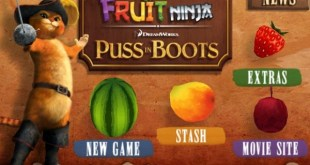 111230-fruit