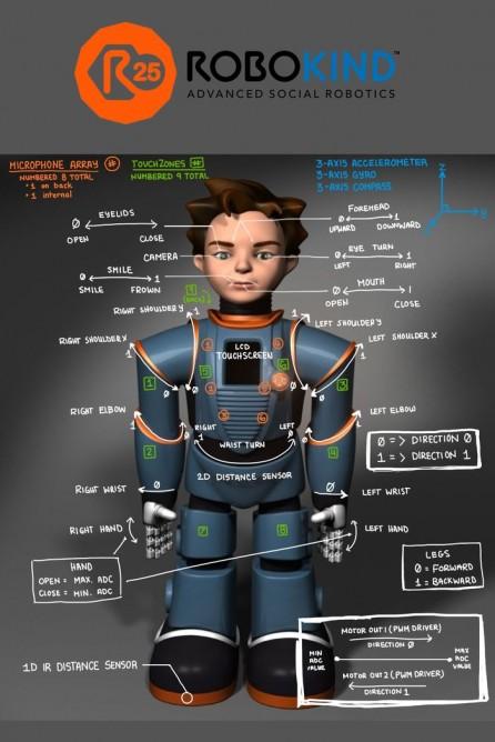 131030-robo-graphic