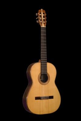 Rosewood guitar front