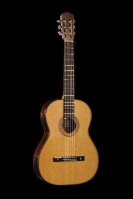 Chitarra classica in palissandro vista frontale