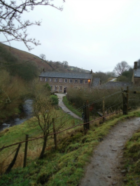 modflowers: Gradbach Mill